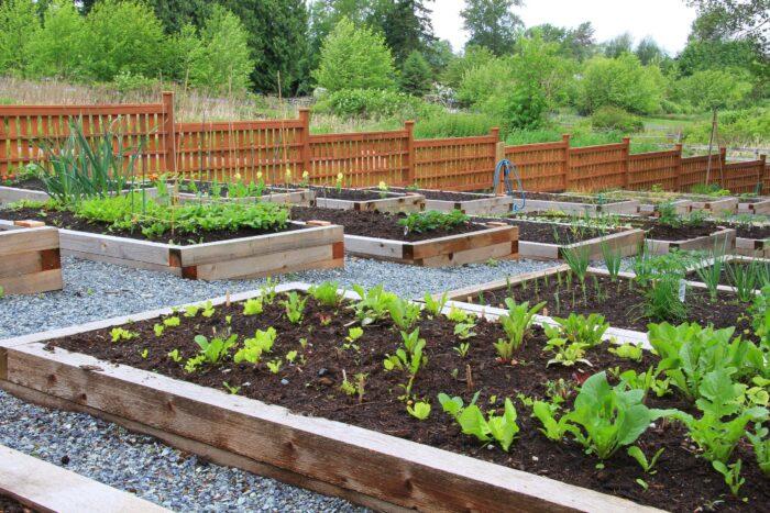 garden soil dirt cheap