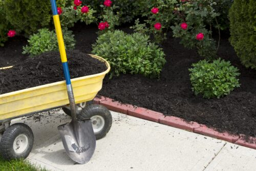 best black mulch Waterloo