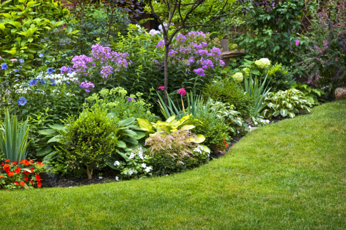 where to buy mulch Cambridge