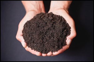 how much is topsoil Kitchener