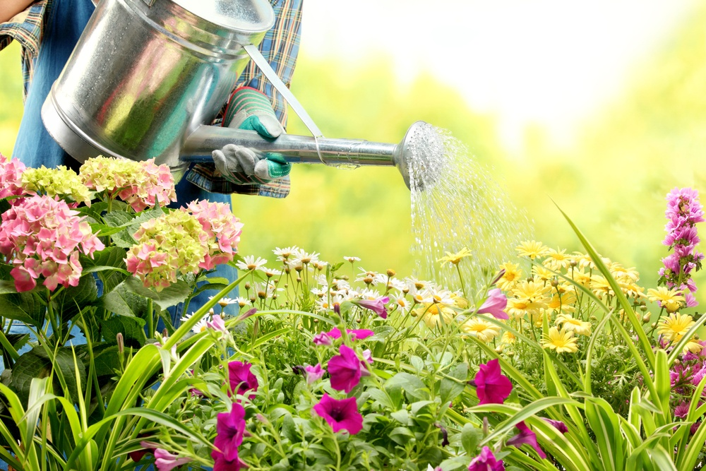 How to fix common soil problems dirt cheap kitchener for Cheap topsoil