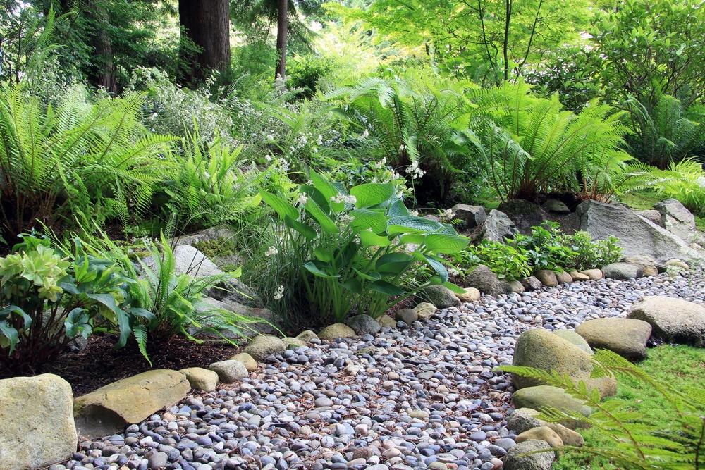 Best flowering plants for shady gardens dirt cheap kitchener for Cheap topsoil