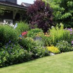 Tips for year-round colour in your garden from Dirt Cheap in Kitchener