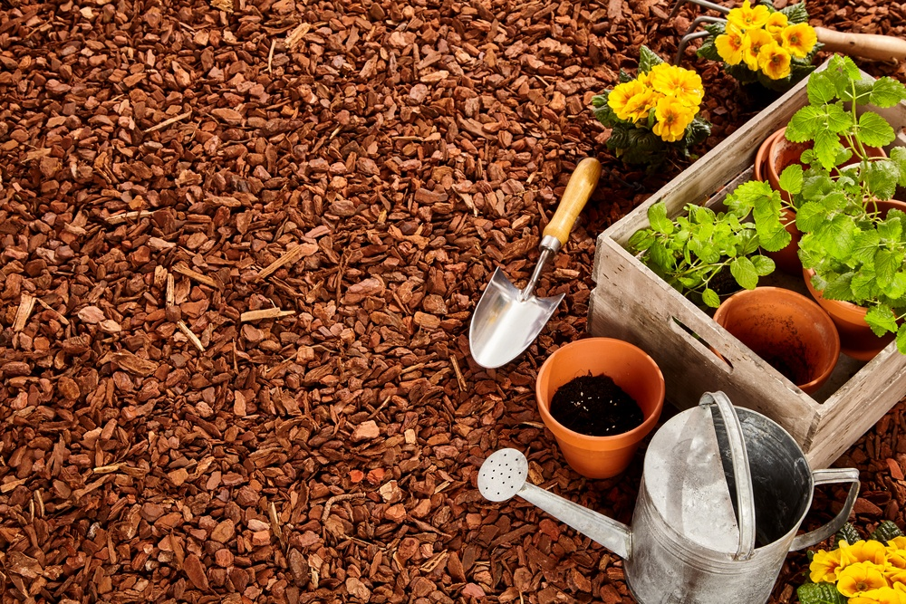 How to mulch your backyard dirt cheap mulch delivery for Cheap topsoil