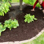 Lawn edging ideas from Dirt Cheap in Ontario