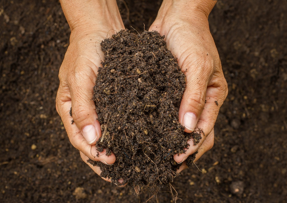 How to build healthy soil dirt cheap kitchener hamilton for Cheap topsoil