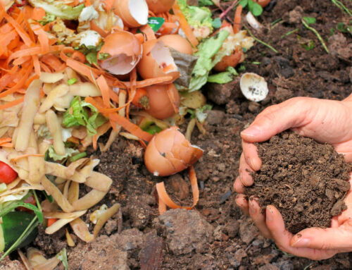 How to Compost for Garden Soil