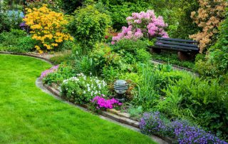 Pro gardening tips from Dirt Cheap in Kitchener