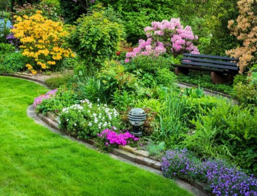 Gardening Tips to Help You Garden Like a Pro