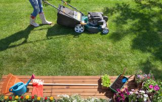 Spring lawn tips from Dirt Cheap in Kitchener
